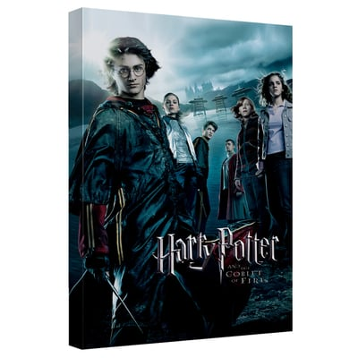 Harry Potter & The Goblet of Fire™ Art Canvas