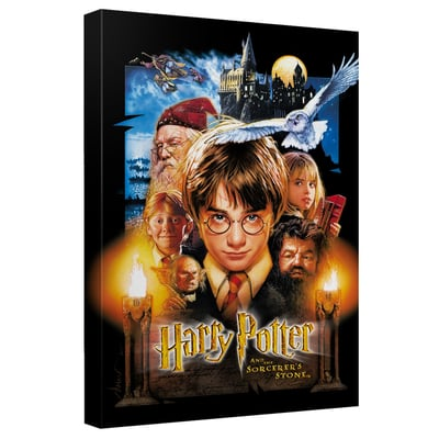 Harry Potter & The Sorcerer's Stone™ Art Canvas