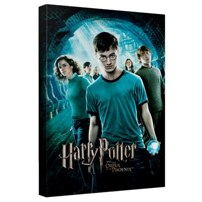 Harry Potter & The Order of the Phoenix™ Art Canvas
